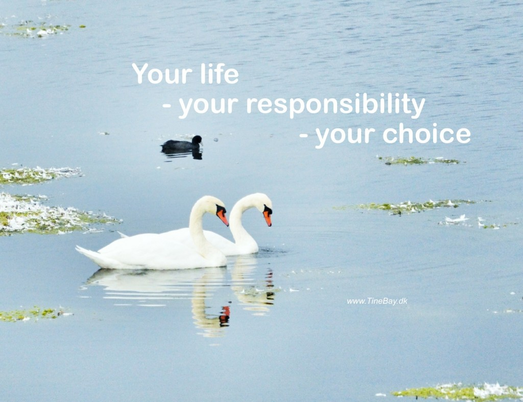 Your life - your responsibility  - your choice
